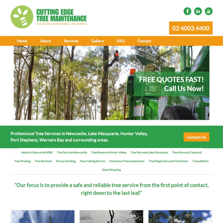 Cutting Edge tree and stump removal site
